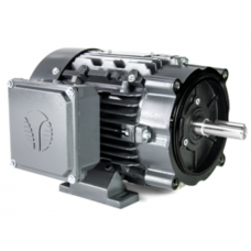 1 HP, 1800 RPM, 143T FRAME, 230/460 Volts, TEFC Three Phase Electric Motor, Cast Iron